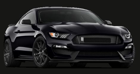 Ford Mustang Shelby GT350 Schwarz ohne Streifen NEU! - www.justgetit.ch bd08009843